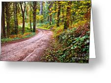 Forest Footpath Greeting Card by Carlos Caetano