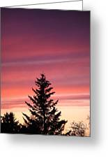Forest Grove Sunset Greeting Card