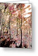 Forest In Autumn Greeting Card