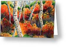 Forest In Color Greeting Card