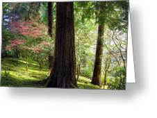 Forest In Portland Japanese Garden Greeting Card