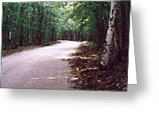 Forest In The Road Wc 2 Greeting Card