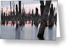Forest In The Water Greeting Card by Jennifer Ancker