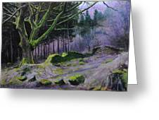 Forest In Wales Greeting Card
