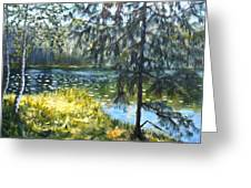 Forest Lake Greeting Card