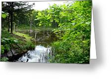 Forest Lake Hideout Greeting Card
