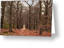 Forest Lane Near Maarsbergen Greeting Card