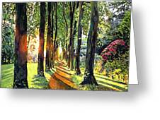 Forest Of Enchantment Greeting Card by David Lloyd Glover