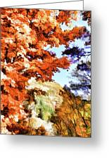 Forest Of Fall Colors Greeting Card
