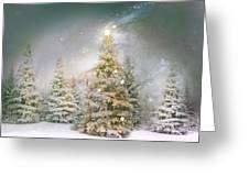 Forest Of Trees In Wintergreens Greeting Card