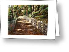 Forest Path White Cliff Greeting Card