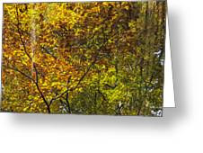 Forest Pattern Greeting Card