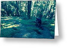 Forest Ride Greeting Card