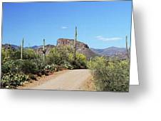 Forest Road 172 Tonto National Forest Greeting Card
