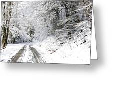 Forest Service Road 76 Greeting Card by Thomas R Fletcher