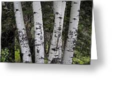 Forest Signpost Greeting Card