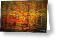 Colorful Forest, Smoky Mountains, Tennessee Greeting Card