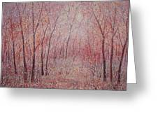Forest Stillness. Greeting Card