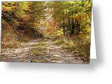 Forest Stone Path Greeting Card