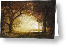 Forest Sunrise Greeting Card