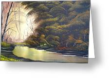 Forest Tranquility  Greeting Card
