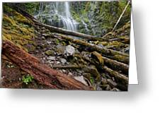 Forest Vibrance Greeting Card