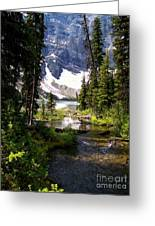 Forest View To Mountain Lake Greeting Card by Greg Hammond