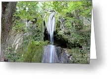 Forest With Waterfall Greeting Card