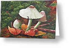 Forest Wonders Greeting Card