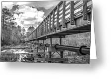 Forever Wild Trail Black And White Greeting Card