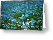 Forget-me-not Flower Patch Greeting Card