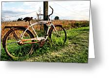 Forgotten Bicycle Greeting Card by Doug Hockman Photography