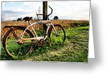 Forgotten Bicycle Greeting Card