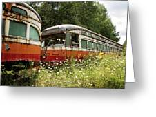 Forgotten Trains Greeting Card