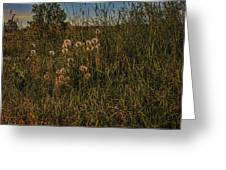 Forgotten World #h6 Greeting Card by Leif Sohlman
