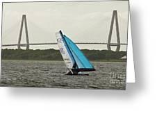 Formula 18 Sailing Cat Big Booty Charleston Sc Greeting Card