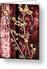 Forsythia Branch Greeting Card