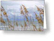 Fort Fisher Greeting Card