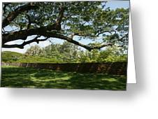 Fort Galle Greeting Card