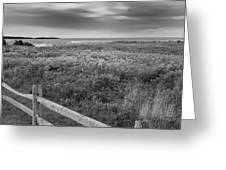 Fort Hill Bw Greeting Card