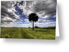 Fort Moultrie Palm  Greeting Card