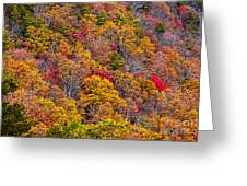Fort Mountain State Park Cool Springs Overlook Greeting Card