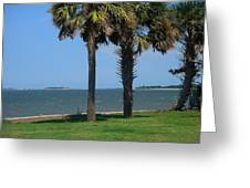 Fort Sumter Charleston Sc Greeting Card