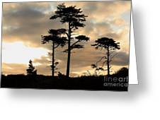 Fort Worden Sunrise Greeting Card