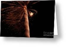 Fourth Of July Fireworks Twelve Greeting Card
