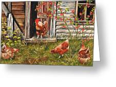 Fossicking Fowls Greeting Card