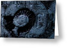 Fossil Grave II Greeting Card