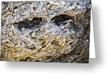 Fossil Rock Abstract - Eyes Greeting Card