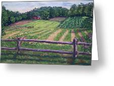 Fosterfields Farm Greeting Card