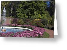 Fountain And Mums Greeting Card